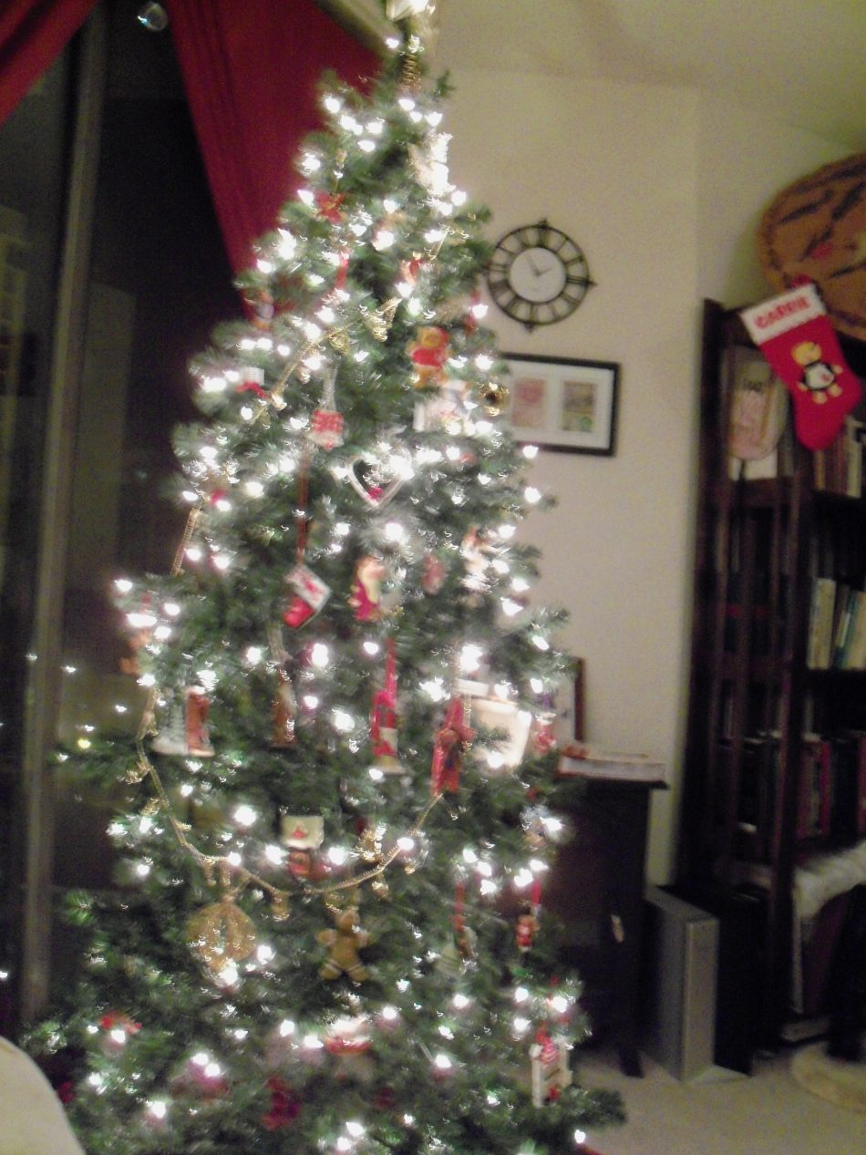 The True Meaning of Christmas Trees: The Spiritual Abuse ...